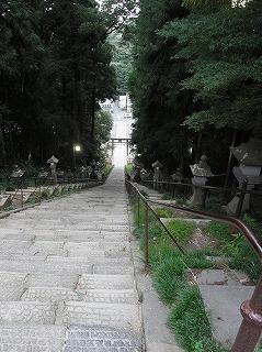 L-RIMG3654.jpg