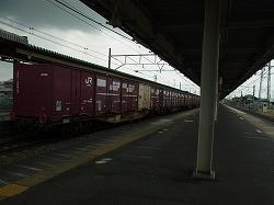 RIMG3293-250.jpg