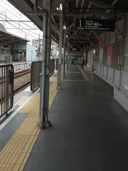 RIMG3646.jpg